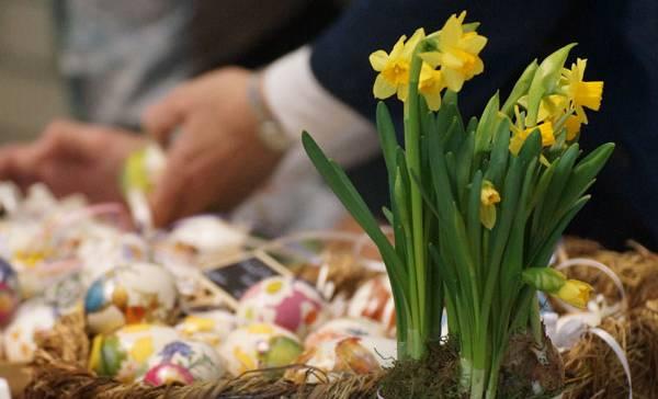 Lust auf Ostern???